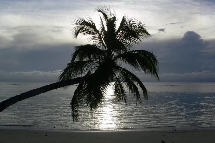 Un décor paradisiaque